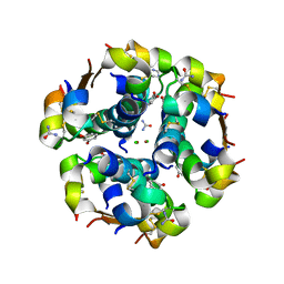 Molmil generated image of 2om0