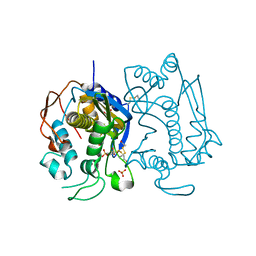 Molmil generated image of 2onb