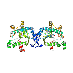 Molmil generated image of 2oq2