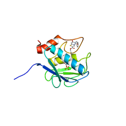 Molmil generated image of 2ow9