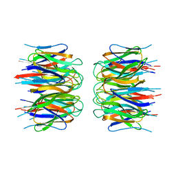 Molmil generated image of 2p1b