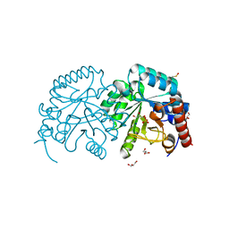 Molmil generated image of 2p1f