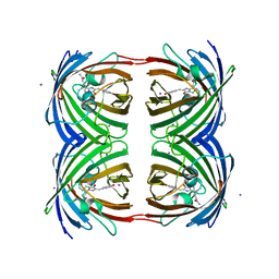 Molmil generated image of 2p4m