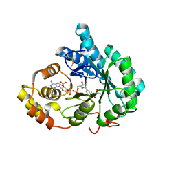 Molmil generated image of 2p5n