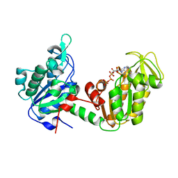 Molmil generated image of 2paa