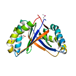 Molmil generated image of 2pd1