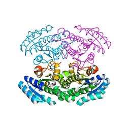 Molmil generated image of 2ph3