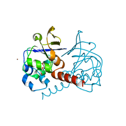 Molmil generated image of 2pkp