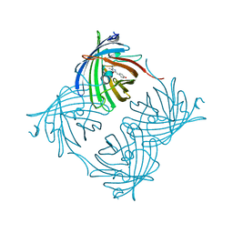 Molmil generated image of 2pxs