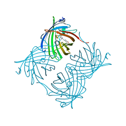 Molmil generated image of 2pxw