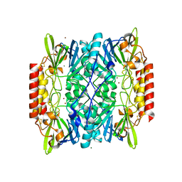 Molmil generated image of 2qin