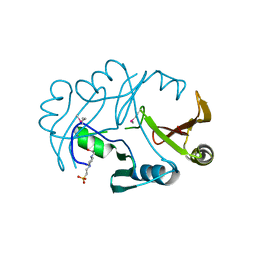 Molmil generated image of 2qnt