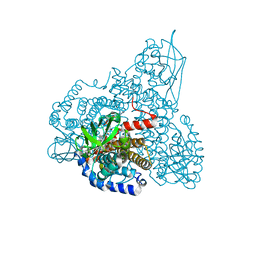 Molmil generated image of 2r0m