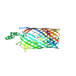 Molmil generated image of 2r4n