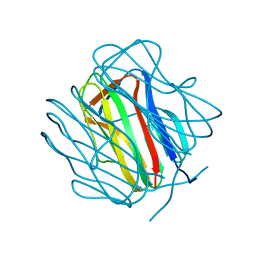Molmil generated image of 2r6q