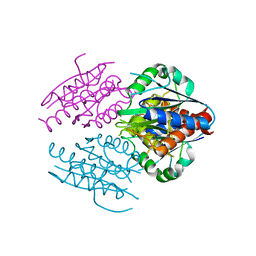 Molmil generated image of 2rg1