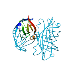 Molmil generated image of 2rta