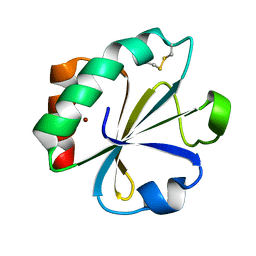 Molmil generated image of 2tir