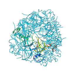 Molmil generated image of 2uy8