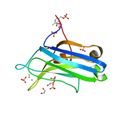 Molmil generated image of 2uzp