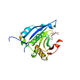 Molmil generated image of 2v8x