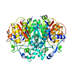 Molmil generated image of 2vb9