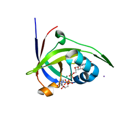 Molmil generated image of 2vbv