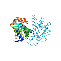 Molmil generated image of 2vcj
