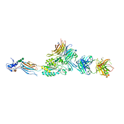 Molmil generated image of 2vdl