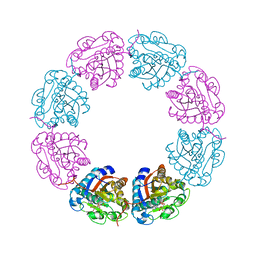 Molmil generated image of 2ved