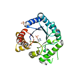 Molmil generated image of 2veg