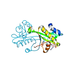 Molmil generated image of 2vez