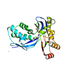 Molmil generated image of 2vf3