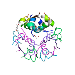 Molmil generated image of 2vk0