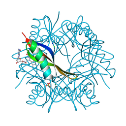 Molmil generated image of 2vkf