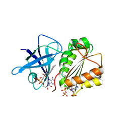 Molmil generated image of 2vnk
