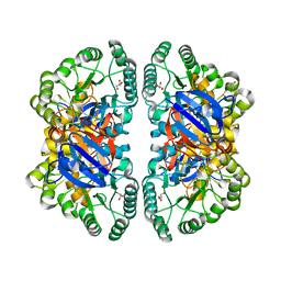 Molmil generated image of 2vun