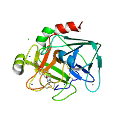 Molmil generated image of 2vwo