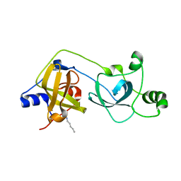 Molmil generated image of 2vyt