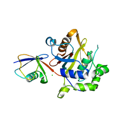 Molmil generated image of 2wdt
