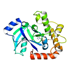 Molmil generated image of 2wfg