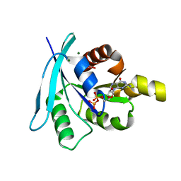 Molmil generated image of 2wjh