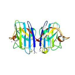 Molmil generated image of 2wko