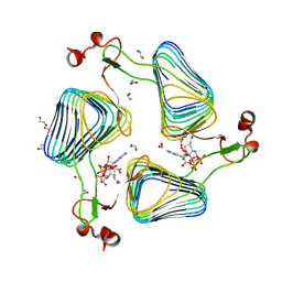 Molmil generated image of 2wlg