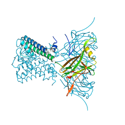 Molmil generated image of 2wlh