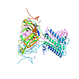 Molmil generated image of 2wlj
