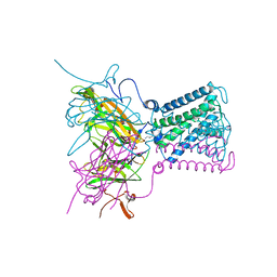 Molmil generated image of 2wlk