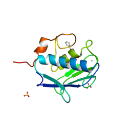 Molmil generated image of 2wo8