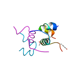 Molmil generated image of 2ws1