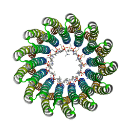 Molmil generated image of 2x2v